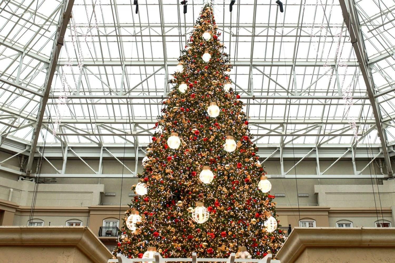 Christmas tree inside the atrium at Gaylord Palms