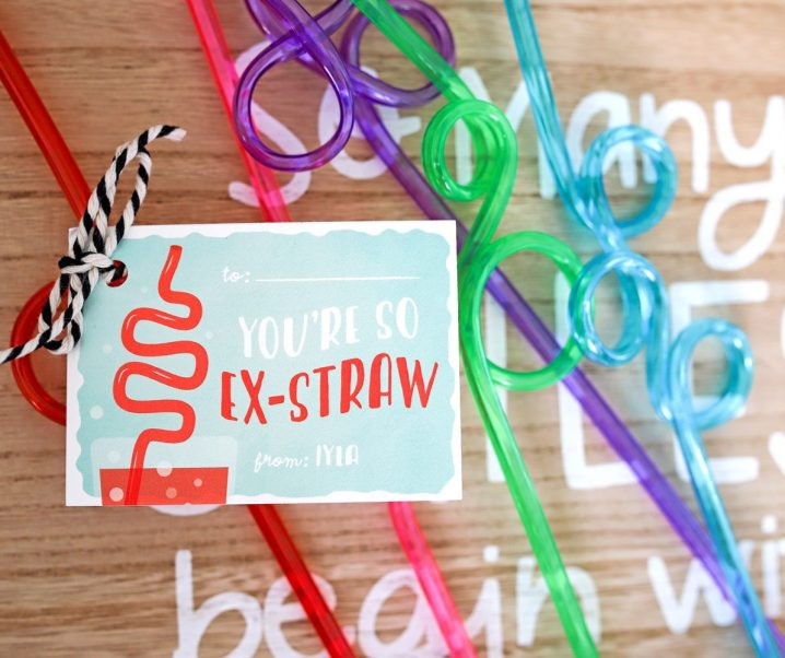 You're So Ex-Straw Valentine's Day Gift Idea