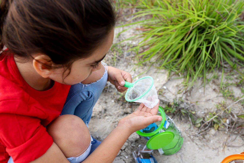 little girl holding a small net
