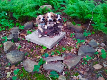 Lily Dale Pet Cemetery three beagles