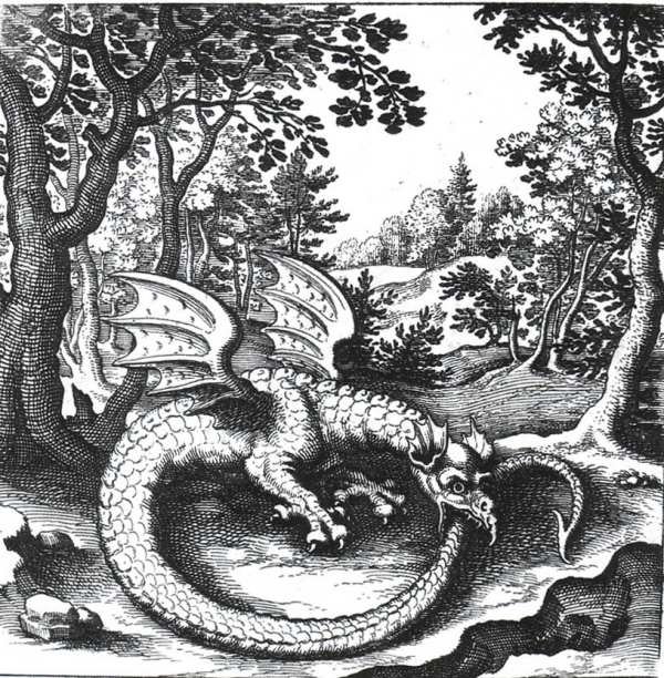 Dragon Ouroboros Symbol