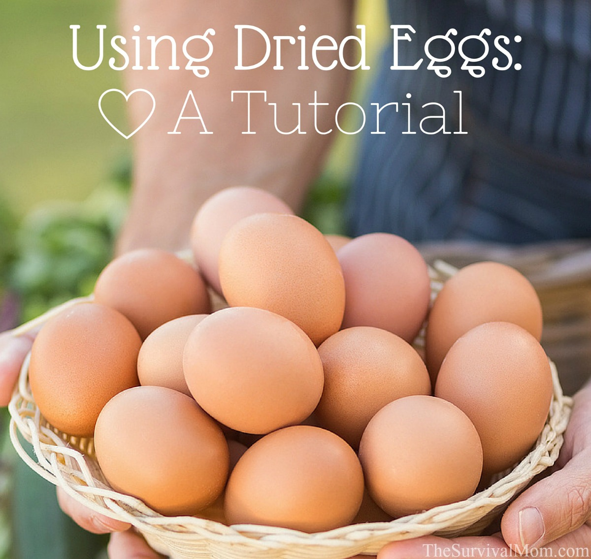 how to use dried eggs