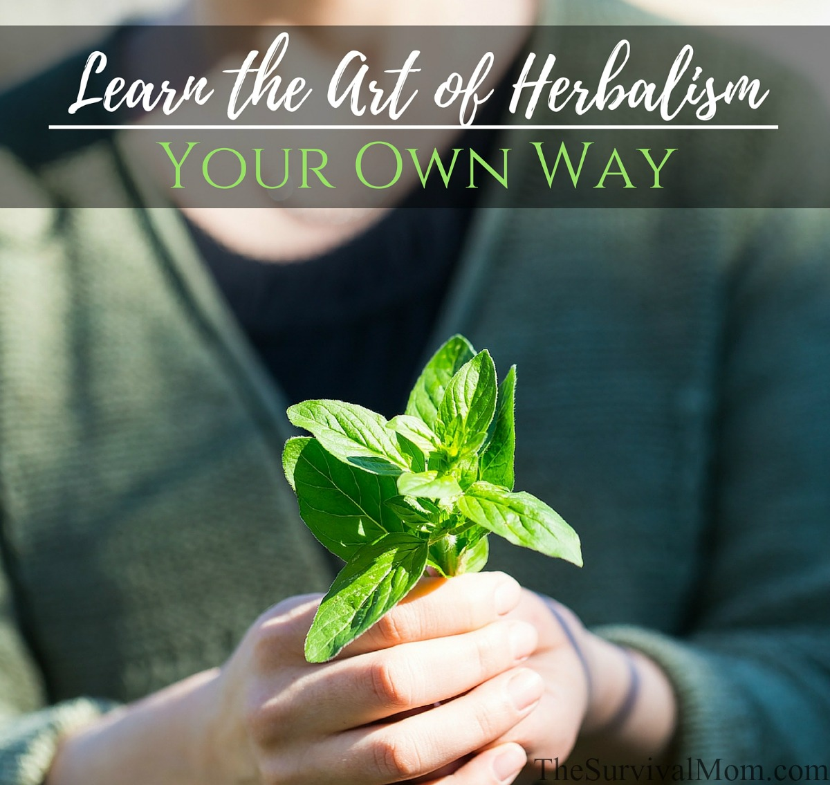 Learn Art of Herbalism