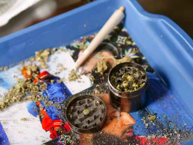 close up photo of weed grinder on tray