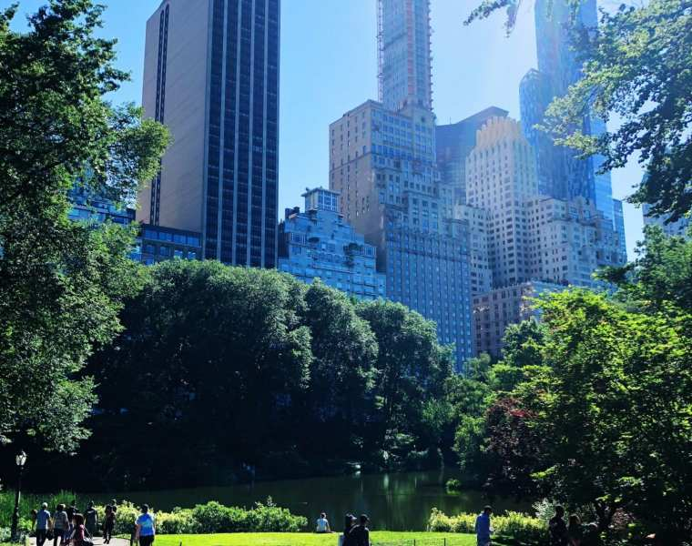 New York Central Park Skyline