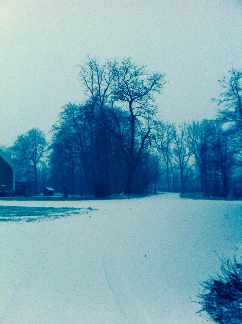 Snow on the farm