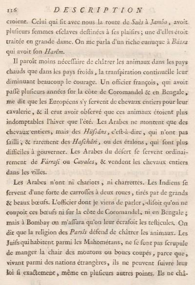 description-de-lArabie-2
