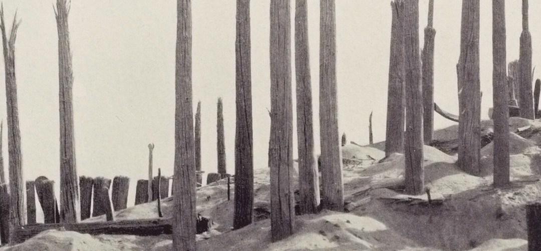 Dans les sables du Taklamakan, Sven Hedin