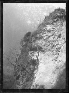 Georges-Auguste Marbotte - arbre à flanc de colline