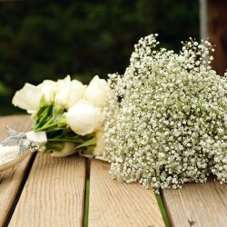 Name little white flowers in bouquets gardening flower and vegetables name little white flowers in bouquets white rose babys breath bouquet the sweetest occasion mightylinksfo