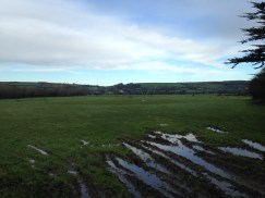 Emerald Cork Countryside