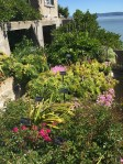 Amazing gardens on the island. Apparently residents (which lived outside the prison) became rather obsessed with gardening