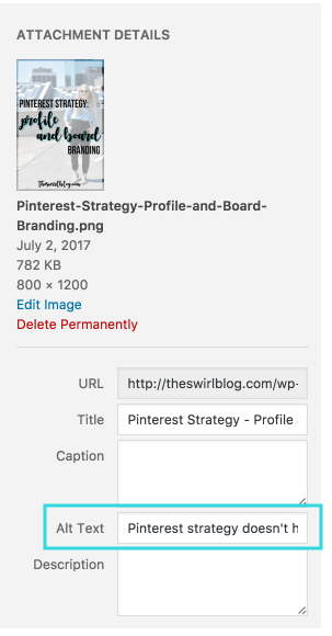 "Improve Pinterest Strategy by Changing the Alt Text of Pictures to Create the ""Ideal Pin"""