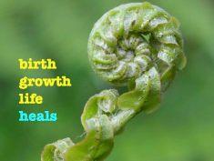 Jocelyn James - Birthgrowthlife.com