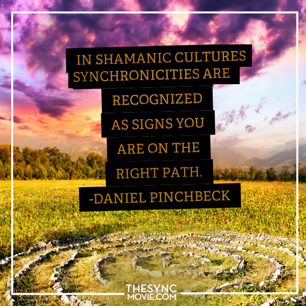 Daniel pinchbeck , sychronicity