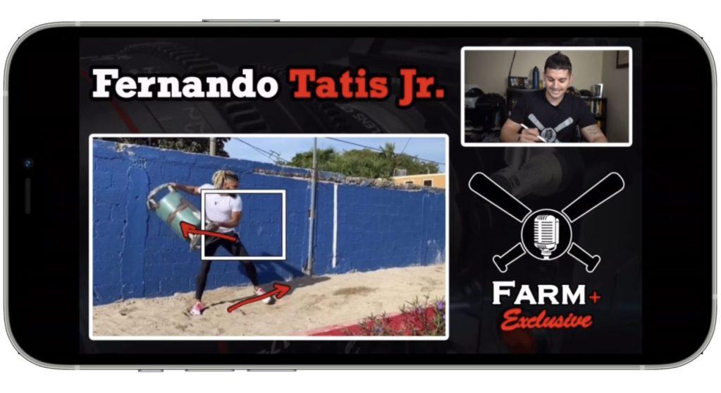 Tatis Jr Breakdown