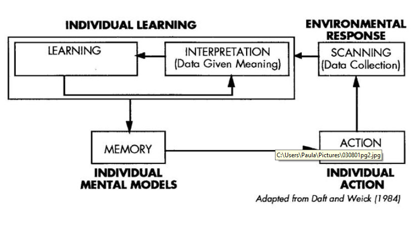 diagram of learning cycle 1997 vw jetta fuel pump wiring the systems thinker managing organizational cycles individual