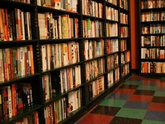 zandbroz-bookshelves