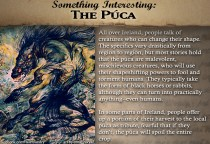 SomethingInteresting_Puca