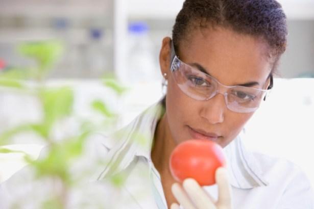 Food Recruiting Companies