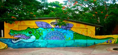 Colourful Graffiti Around Cozumel.