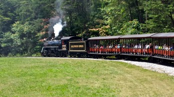 """All aboard the Dollywood Express!"""
