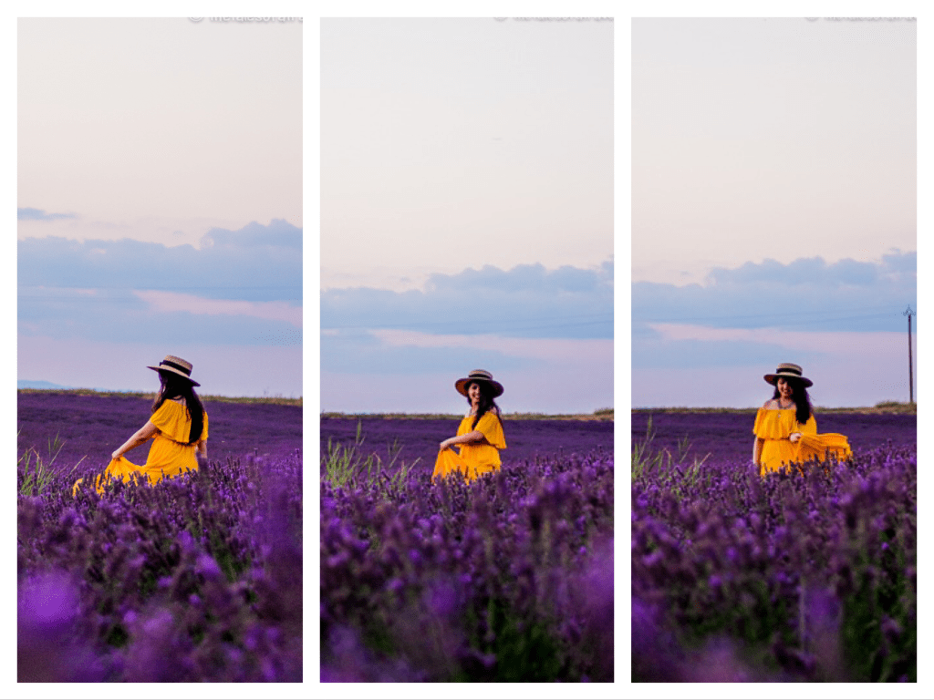 France-Itinerary-Lavender-Fields-Valensole