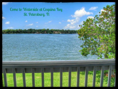 Waterside at Coquina Key Waterfront Condos in St. Pete starting in the low 100's