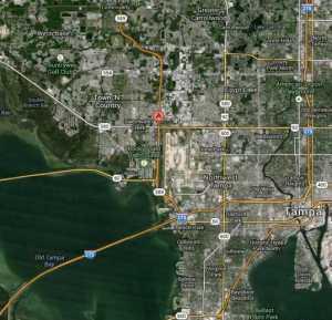 Dana Shores Tampa Waterfront