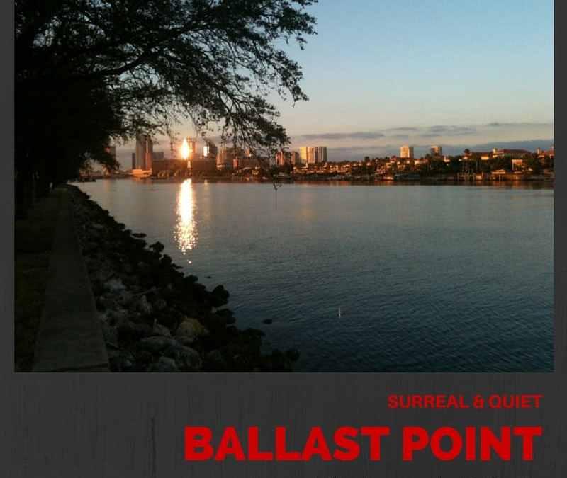 Ballast Point Neighborhood Guide | South Tampa's Hidden Treasure