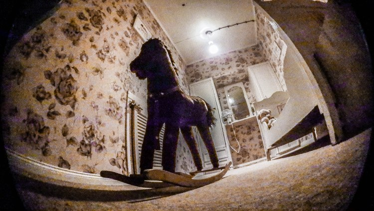 fisheye photo of a room with a horse