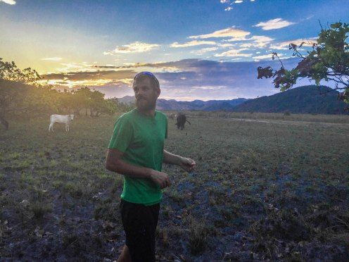 a man standing next to cows during sunset