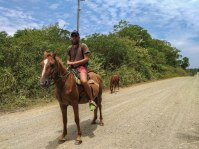 a bearded man on a horse and a tiny horse in the background