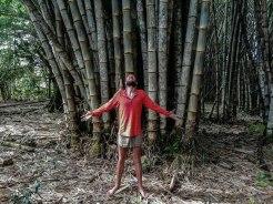 Blonde man standing underneath huge bamboo