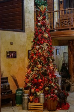 Christmas tree at the Hacienda EL Jibarito