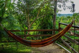hammock at the Hacienda EL Jibarito