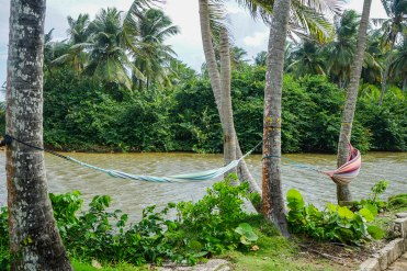 hammock at Casa Coral