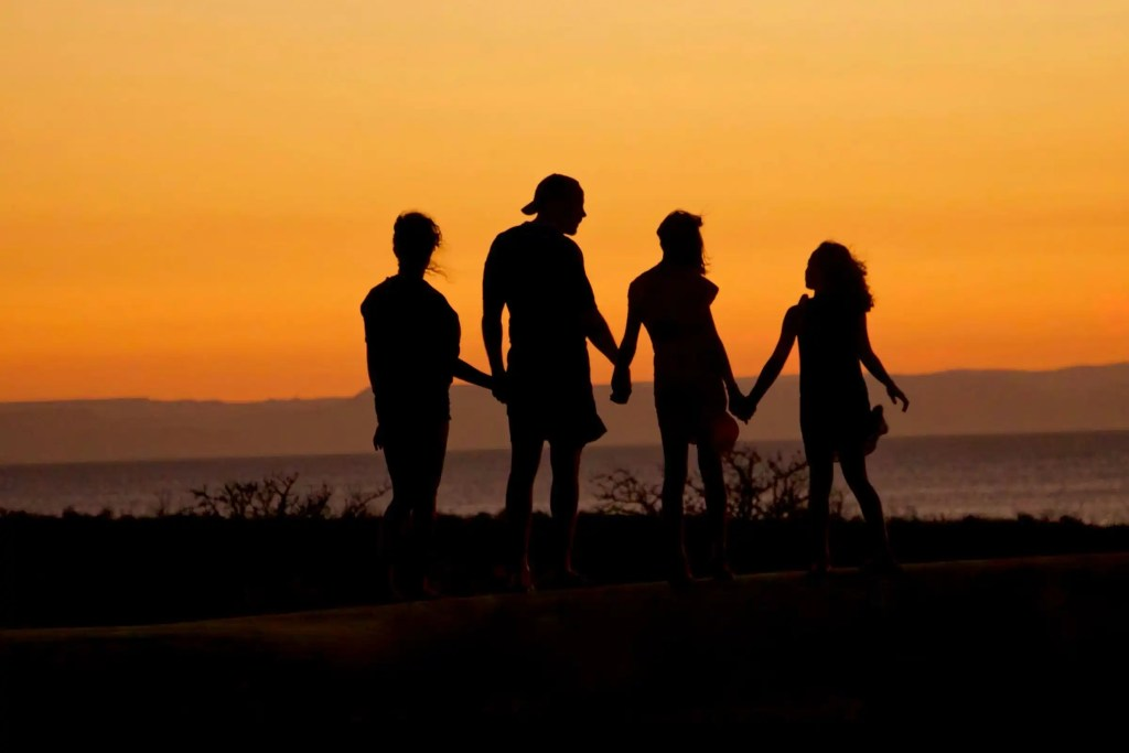 Four individuals hold hands and look at the sunset over a lake.
