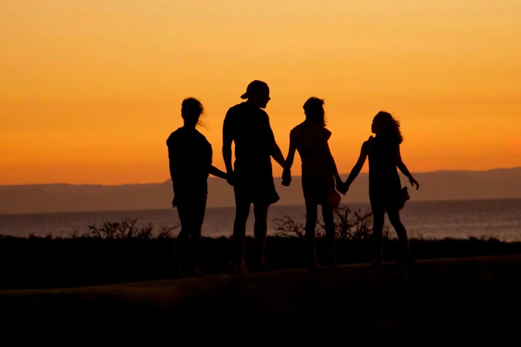 Four individuals holding hands to look at a sunset over a lake.
