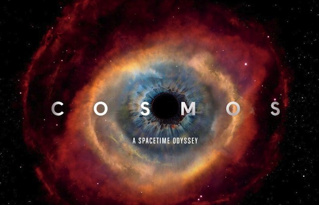 Katie Drunk Blogs Cosmos