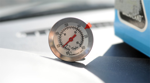 FigsThermometer