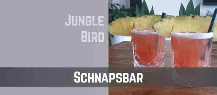 TTC-Schnapsbar-Jungle Bird Cocktail