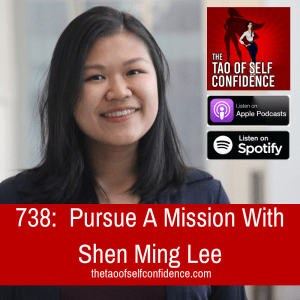Pursue A Mission With Shen Ming Lee