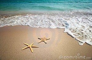 Image Credit: dreamstime.com
