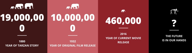 Elephant Initiative