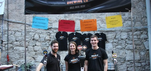 Craft Beer Industry Report - Ireland 2014