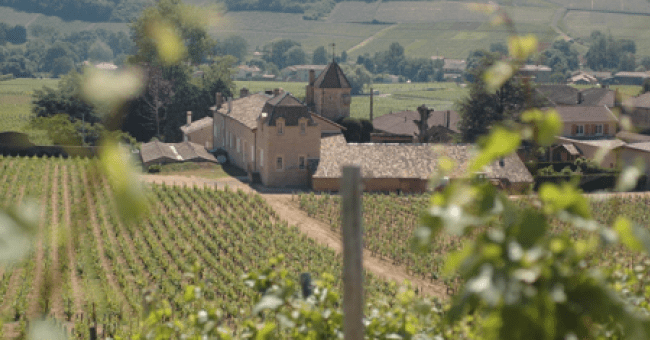 New World or Old World Wines by Frankly Wines