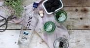 Dingle Gin & Tonic 2