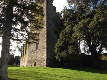 Castlemartyr grounds