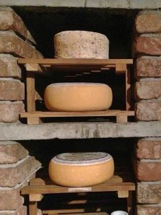 Cheeses at the Strawberry Tree